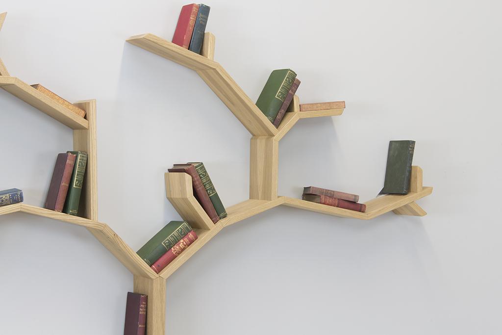 the beech tree shelf