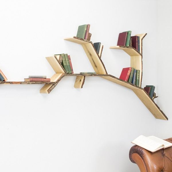 oak shelf tree shelf branch