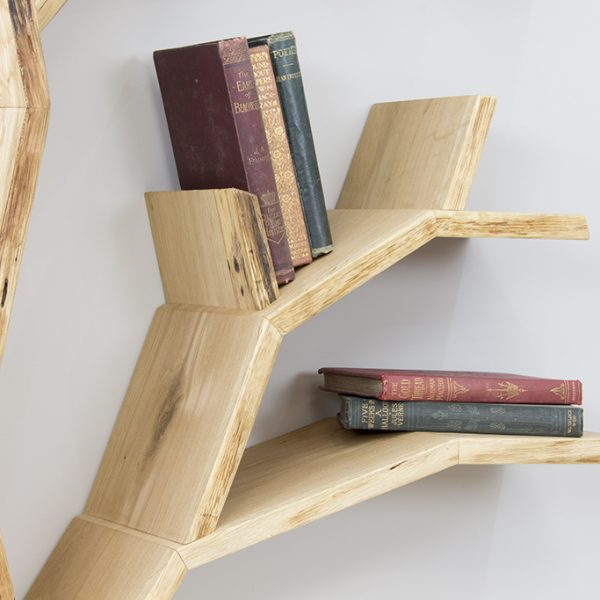 elm-tree-shelf-bookcase-tree-branch-detail